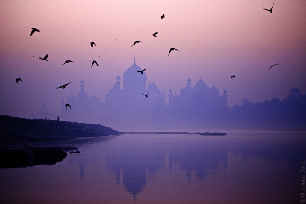 Taj Mahall in Agra, India, shot at sunrise with a flock of birds over the river Yamuna